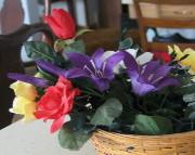 Flower Basket Closeup